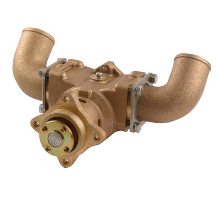 raw water pump impeller replacement how to guide