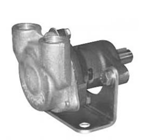 Sherwood G11 General Service Raw Water Pump